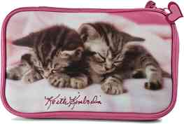 Bolsa Keith Kimberling  Gatos  Nds