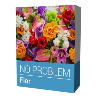 Ver NO PROBLEM SOFTWARE FLOR