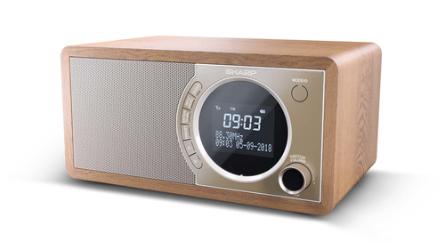 Radio Despertador Sintonizador Dr 450 Br Sharp