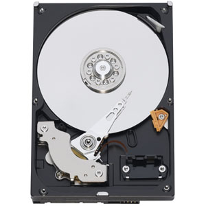 Western Digital Disco Duro 35 Caviar Blue  250 Gb