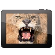 Tablet  Pc Nevir Lcd 8 Capacitivo 4gb 15ghz 2 Nucleos Cortex A9 1gb Ram Ddr3 Android 41 Wifi Camara