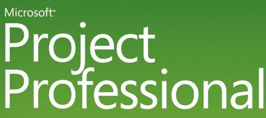 Ver Project Professional  SA  EDU  OLP NL  1U  Win32