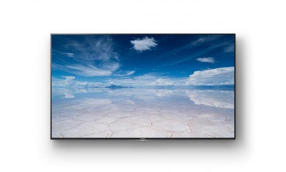 Sony FW 55XD8501 546 LCD 4K Ultra HD Negro