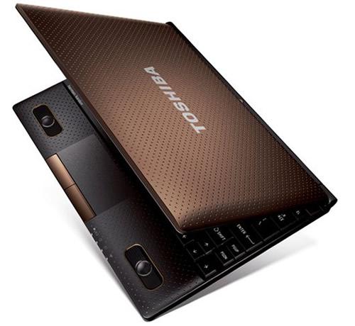 Netbook Toshiba Nb520-10p